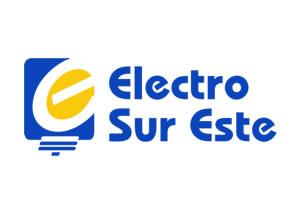electrosur