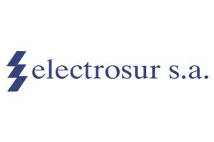 electrosur1